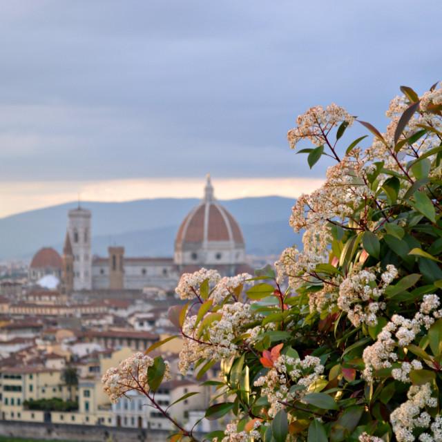 """""""Basilica di Santa Maria del Fiore with flowers"""" stock image"""