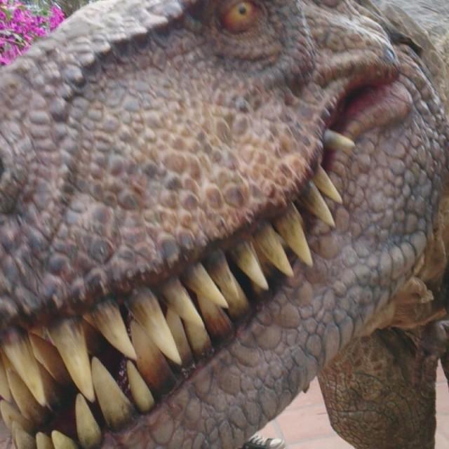"""""""Dinosaur"""" stock image"""