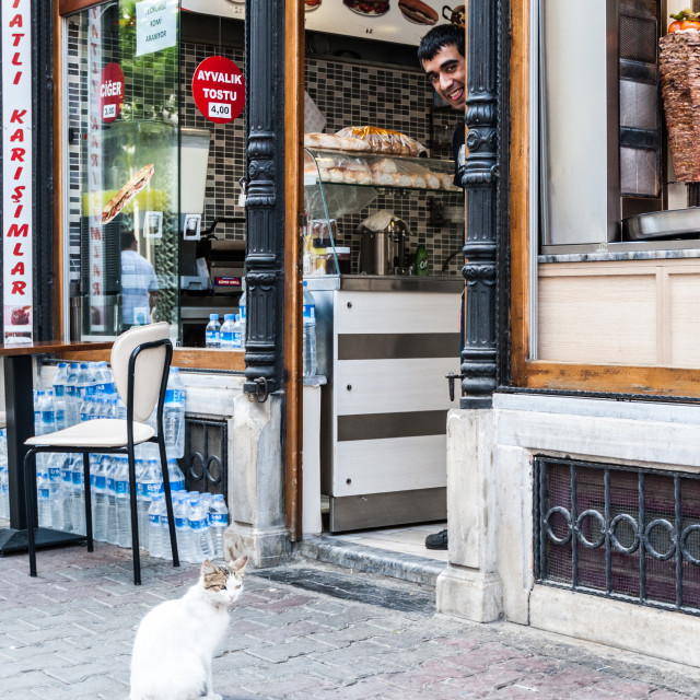 """Cat and kebab seller"" stock image"