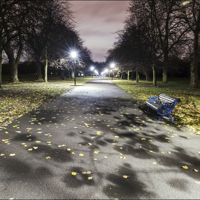 """Shadows on Sefton Park Path"" stock image"