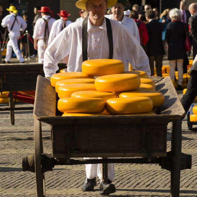 """Alkmaar's historic cheese market"" stock image"