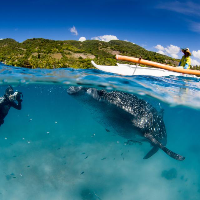 """""""Whake shark, diver, banka, and island"""" stock image"""