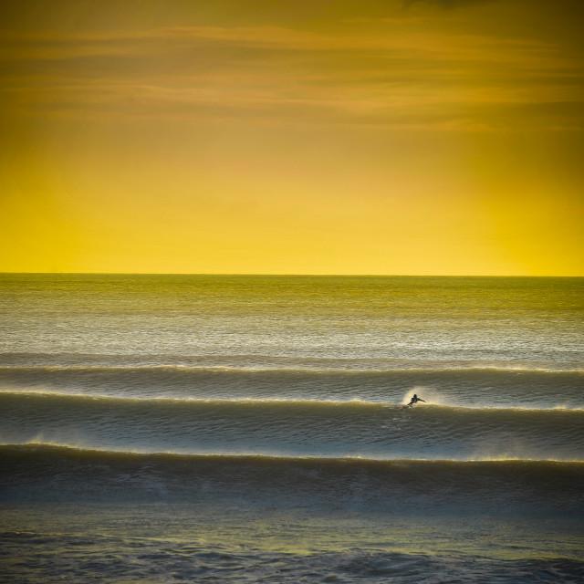 Lone Surfer
