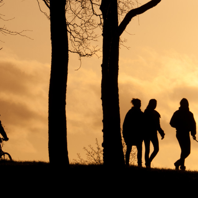 """People silhouettes 1"" stock image"