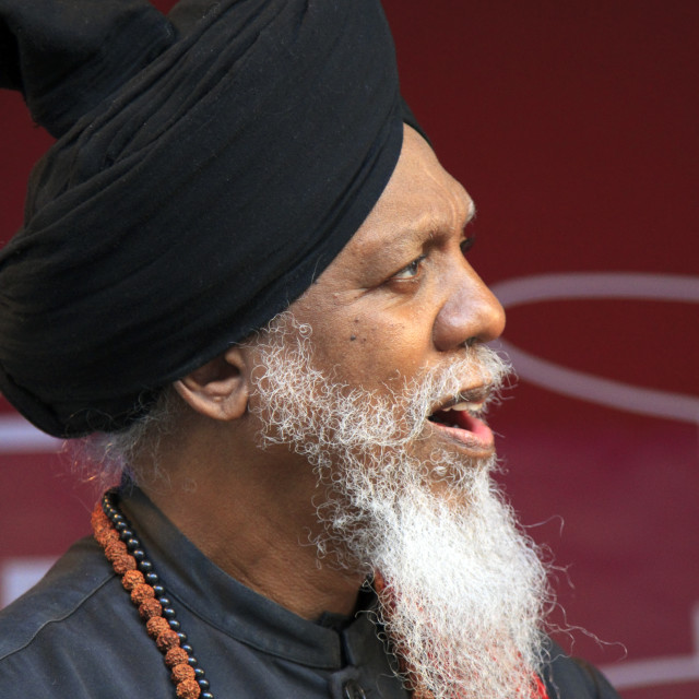 """""""Dr. Lonnie Smith guest musician"""" stock image"""