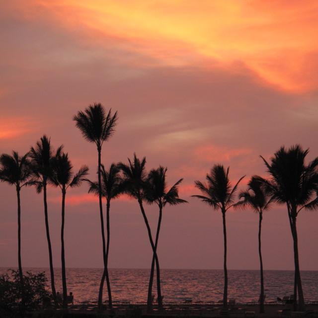 """""""Hawaiian Sunset"""" stock image"""