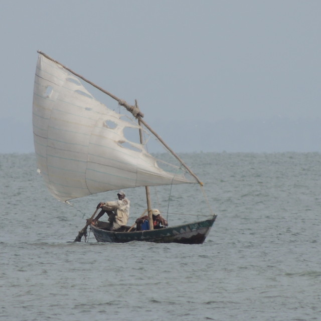 """Fishing Dhow"" stock image"