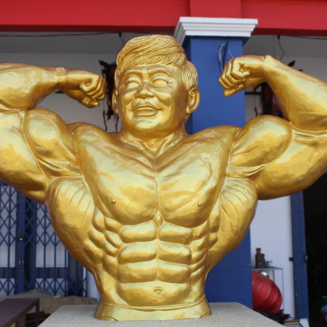 """golden body building statue"" stock image"