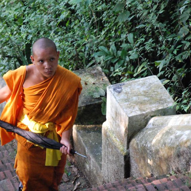 """""""Monk, Luang Prabang"""" stock image"""