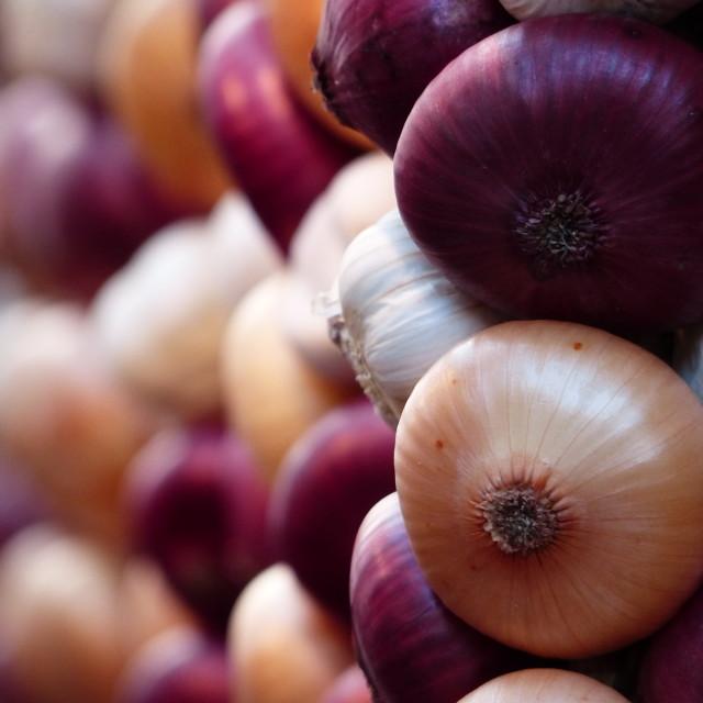 """Onions"" stock image"