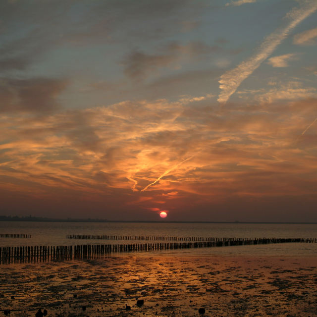 """Sunrise, East Mersea"" stock image"