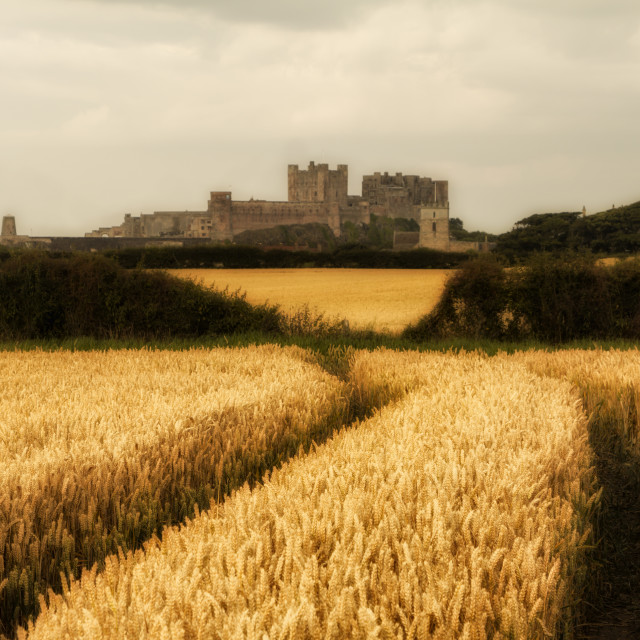 """Bamburgh Castle"" stock image"