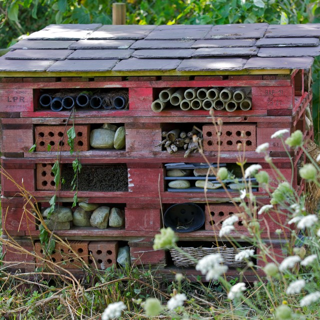 """Insect Hotel"" stock image"