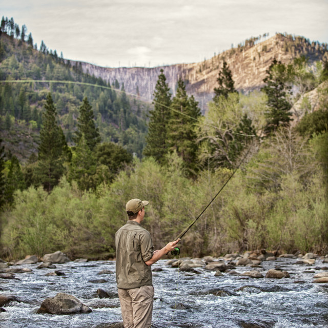"""Mountain Fly Fisherman"" stock image"