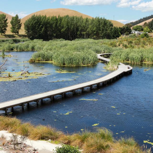 """""""wetland walkway"""" stock image"""