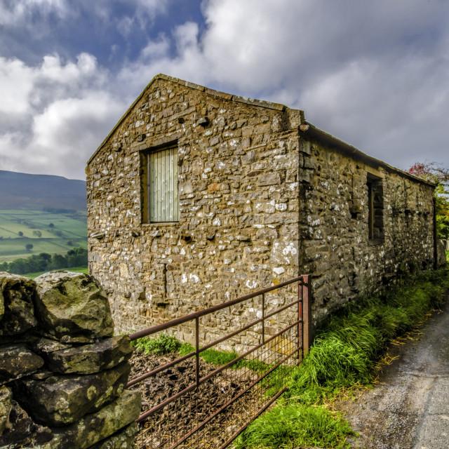 """""""Swaledale Stone Barn"""" stock image"""