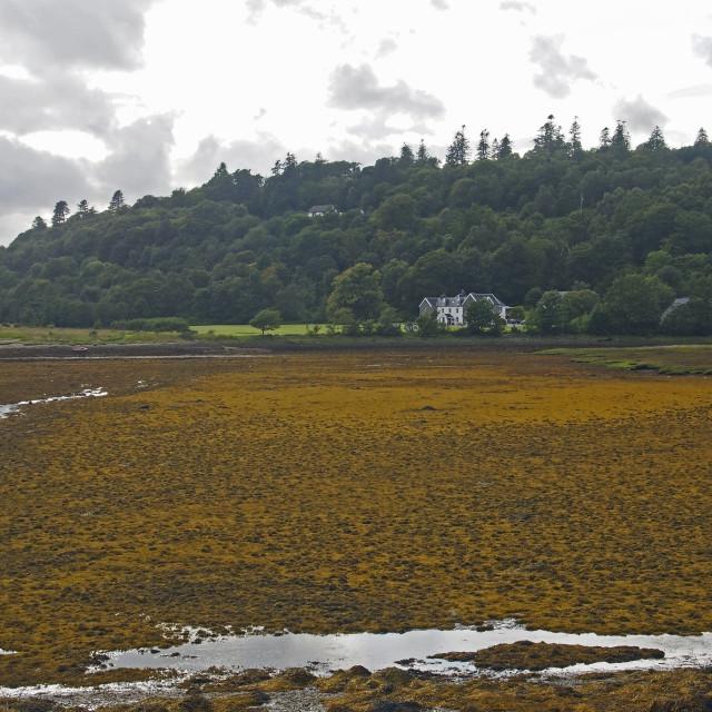 """Scottish loch"" stock image"