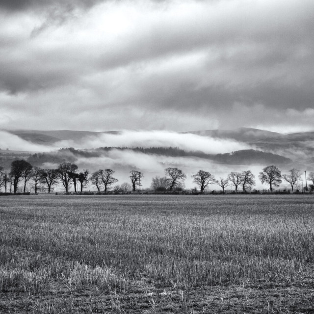 """""""Misty Day on The Trossachs"""" stock image"""