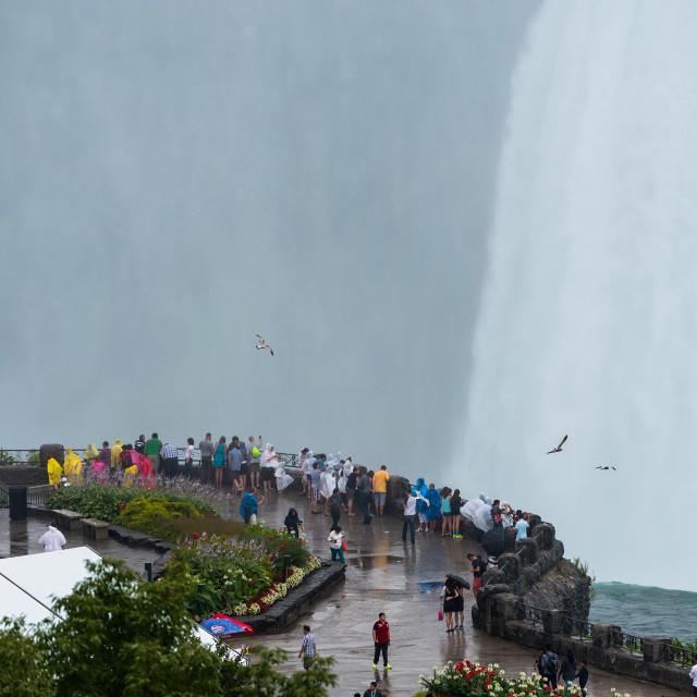 """""""Niagara Falls Canadian lookout"""" stock image"""