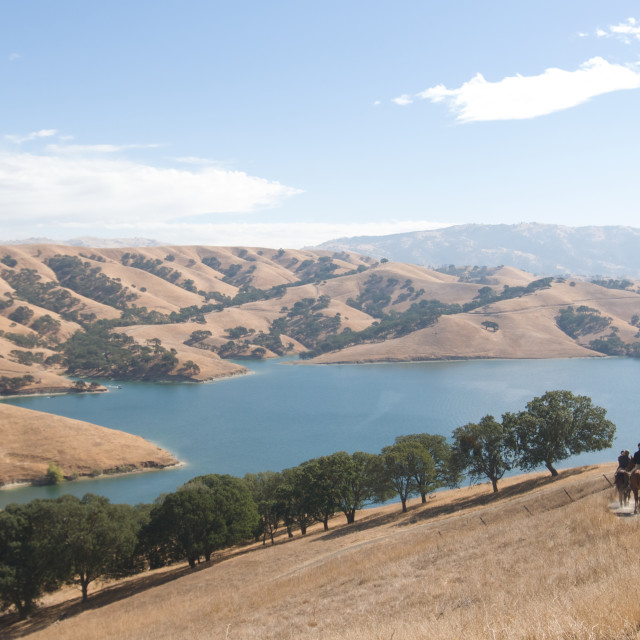 """Group of horseback riders ride down trail at lake"" stock image"