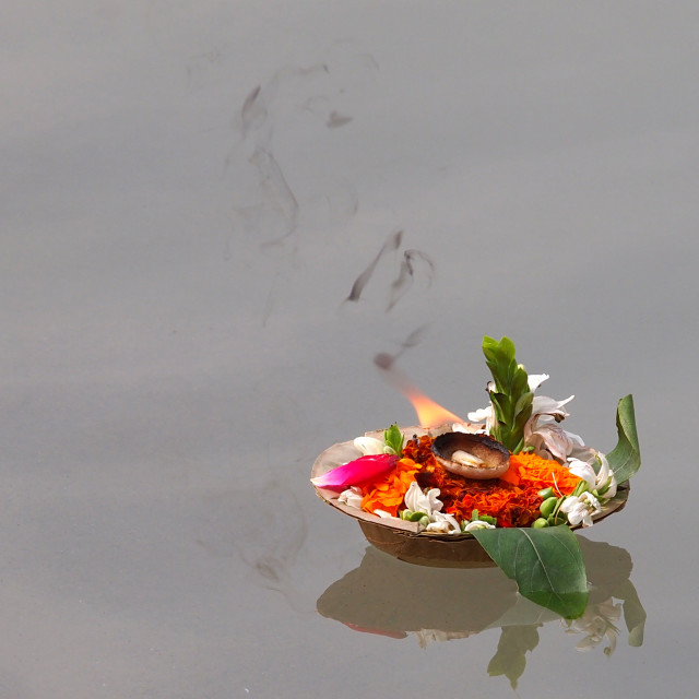 """flowers on the ganges"" stock image"