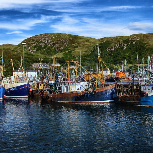 """Mallaig Harbour in Scotland"" stock image"