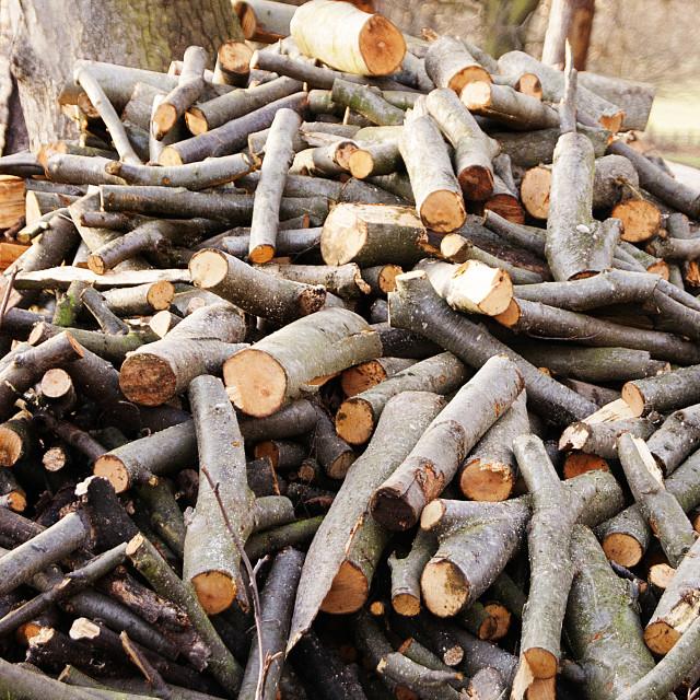 """Firewood"" stock image"