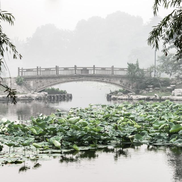 """""""Xuanwu bridge"""" stock image"""