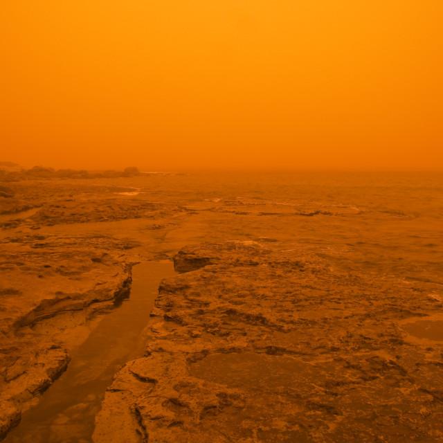 """Sydney dust storm at Bondi Beach, Sydney, Australia"" stock image"