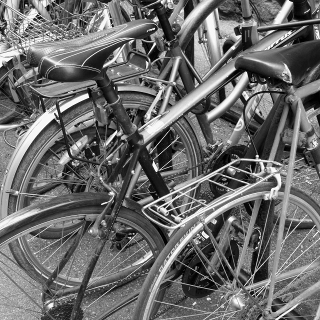 """Parked Bicycycles"" stock image"