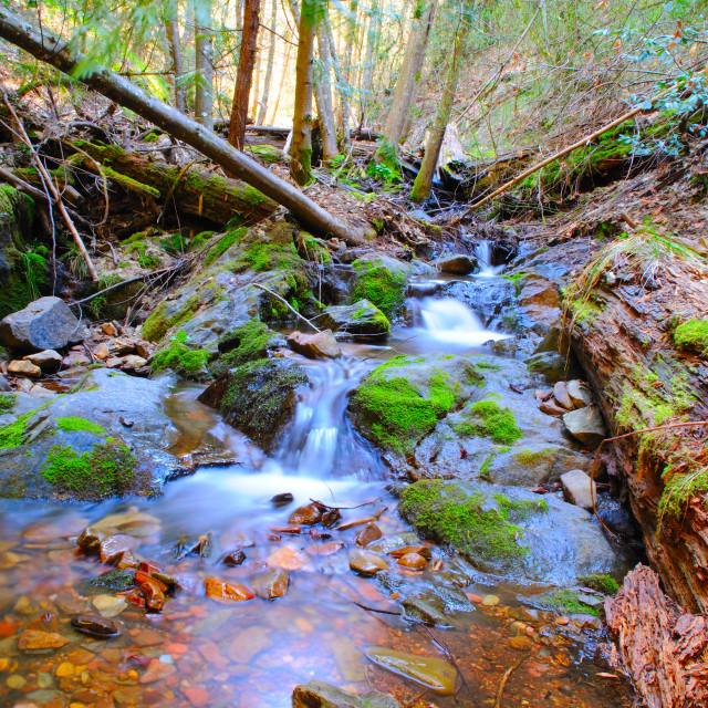 """Peaceful Mountain Stream"" stock image"
