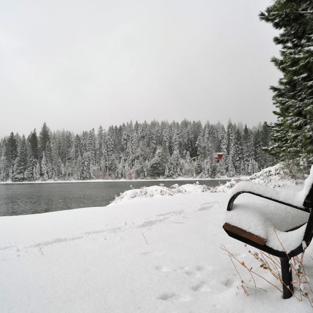 """""""Bench and Lake In Winter"""" stock image"""