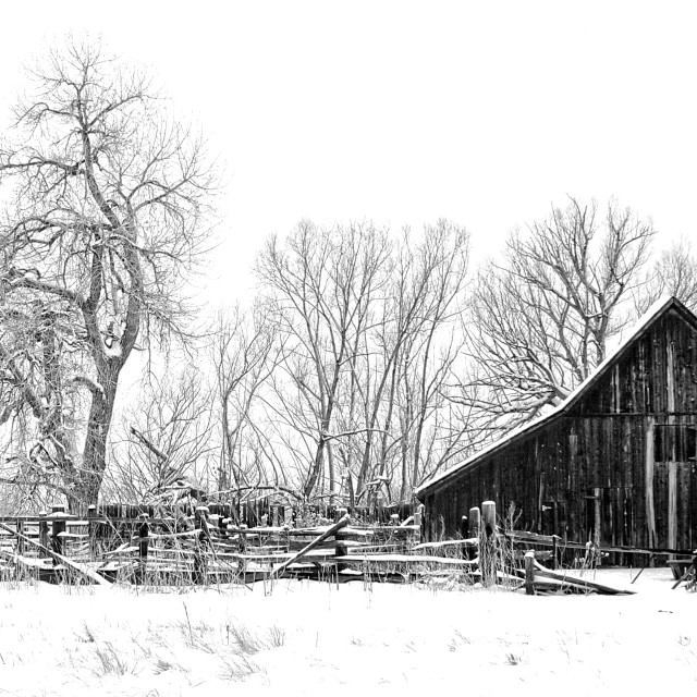 """Dorn Barn - Winter"" stock image"