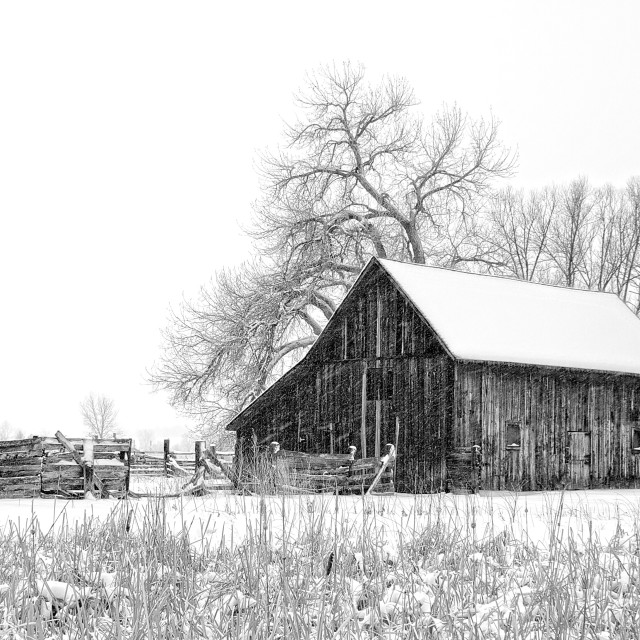 """Dorn Barn Winter 2"" stock image"