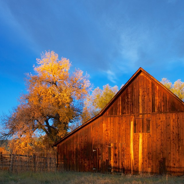 """Dorn Barn - Autumn"" stock image"