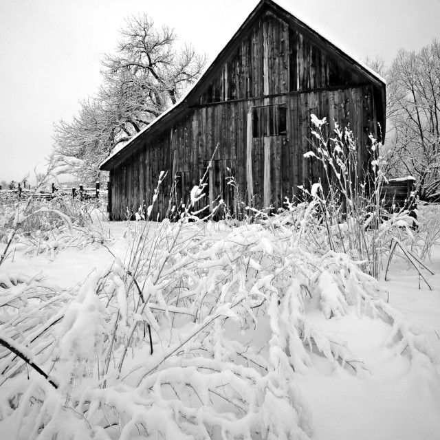 """Dorn Barn Winter 3"" stock image"