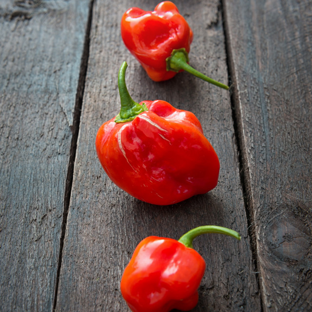 """Red Chili pepper Habanero"" stock image"