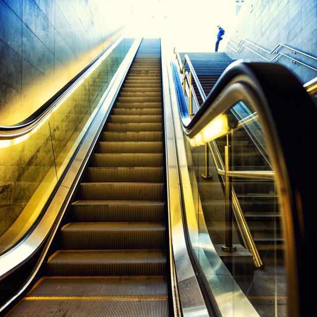 фрукты, картинки схема эскалаторы в метро пуловеры, джемперы
