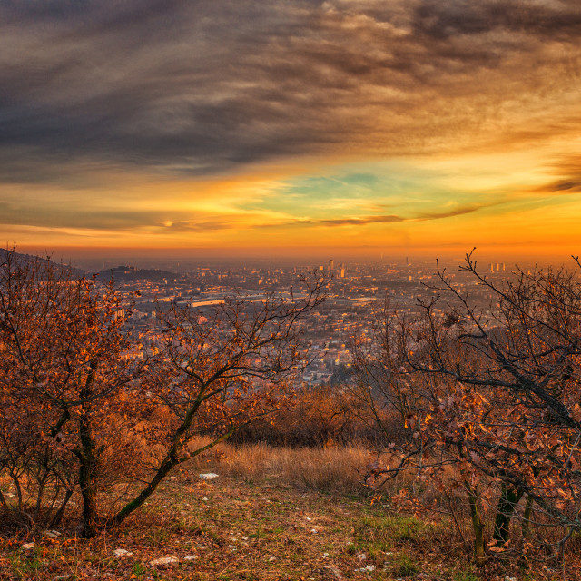 """""""Sunset to hill"""" stock image"""