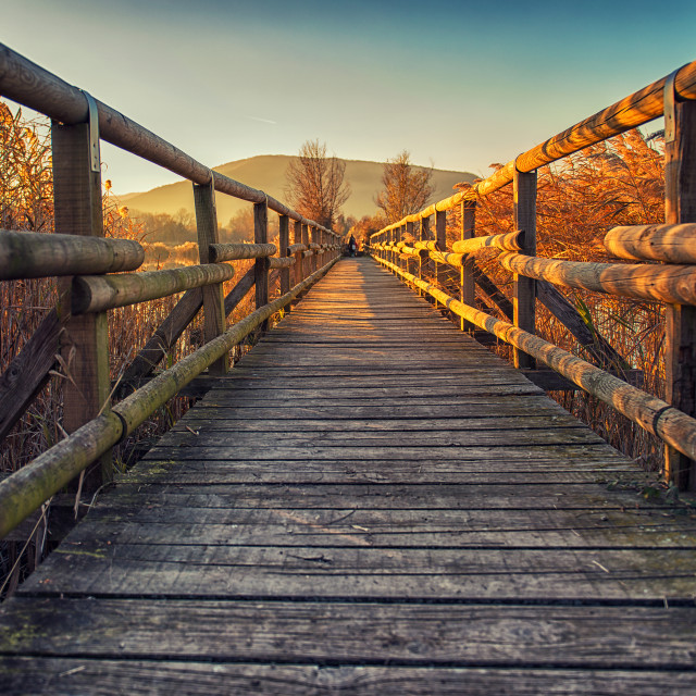 """Little wood bridge"" stock image"