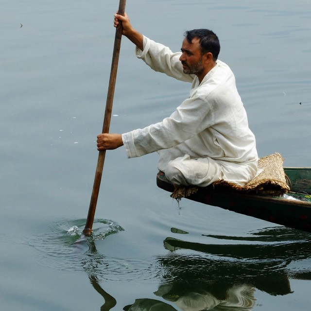 """Shikara Boatman on Dal lake Srinigar"" stock image"
