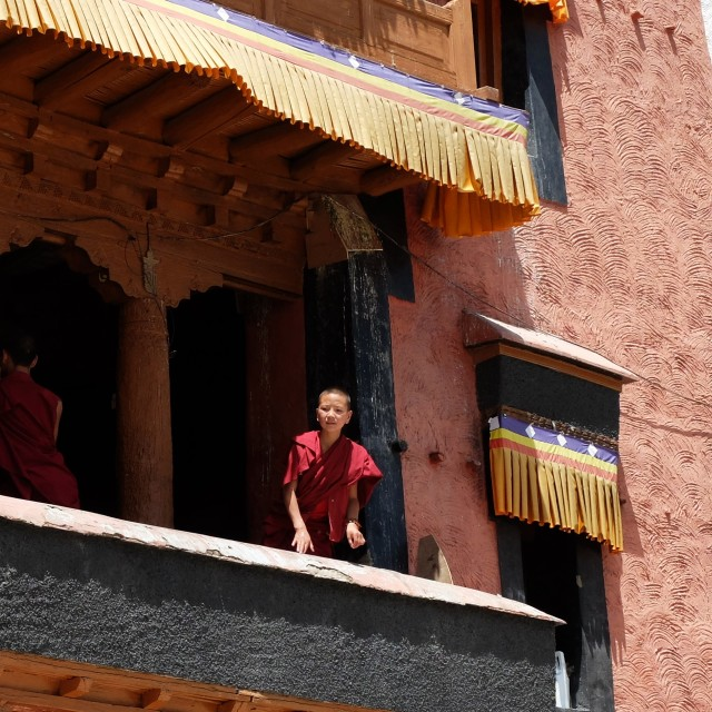 """Monk, Thikse Monastery"" stock image"
