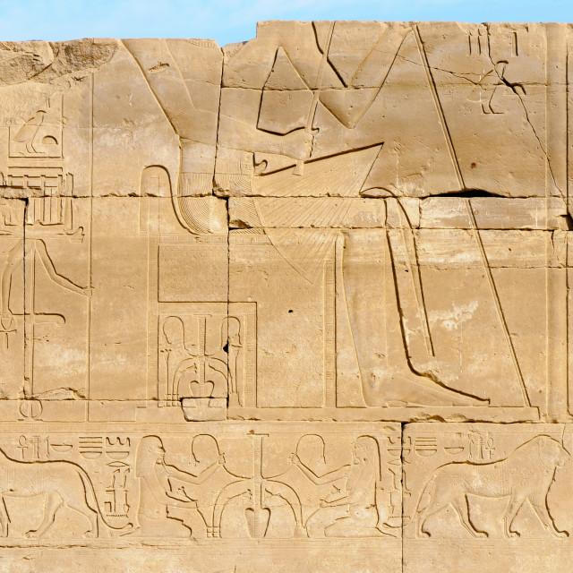 """""""Hieroglyphs in Karnak, Egypt"""" stock image"""