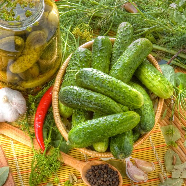 """Little Cucumbers (Gherkins)"" stock image"