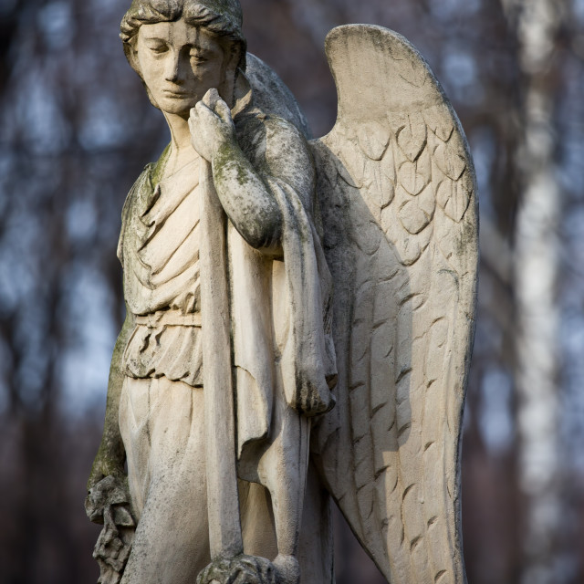 """Angel Statue"" stock image"