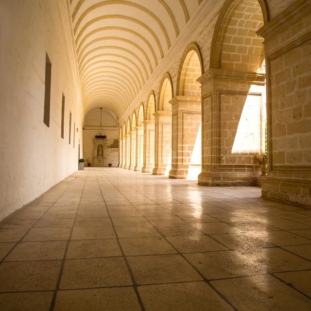 """Saint Dominic in Malta"" stock image"