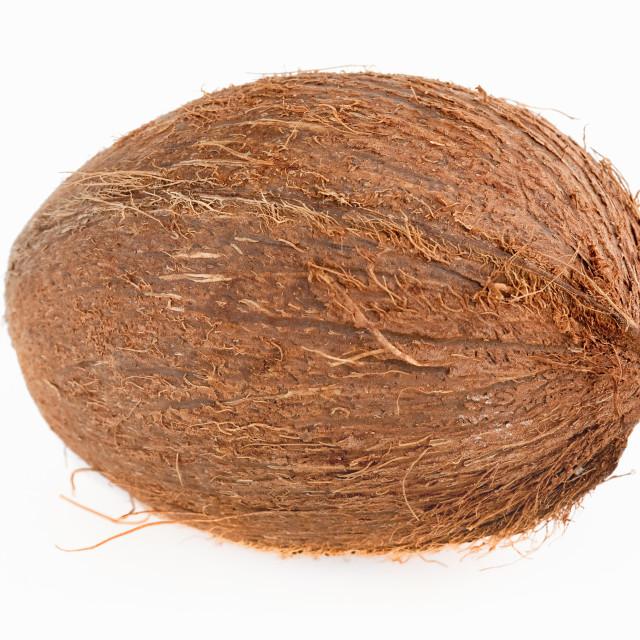"""Coconut studio isolated on white"" stock image"