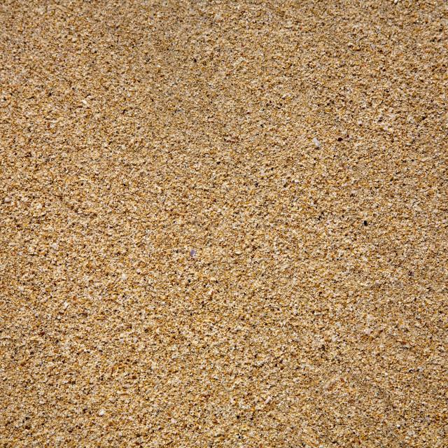 """Sand beach texture close up"" stock image"