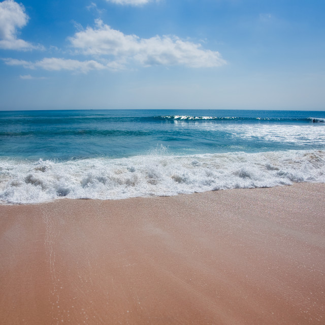 """Tropical sand beach"" stock image"