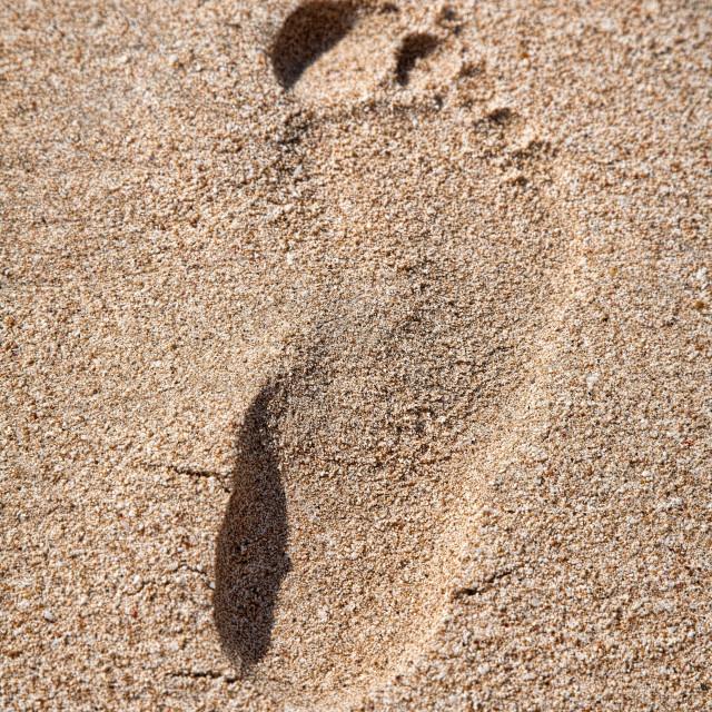 """Footprint on sand beach"" stock image"